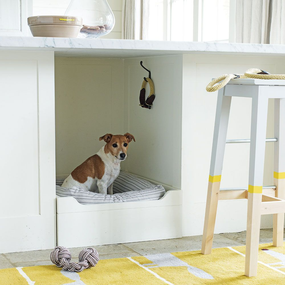 Pet Friendly Home Decor: How To Design And Maintain A Pet Friendly Kitchen