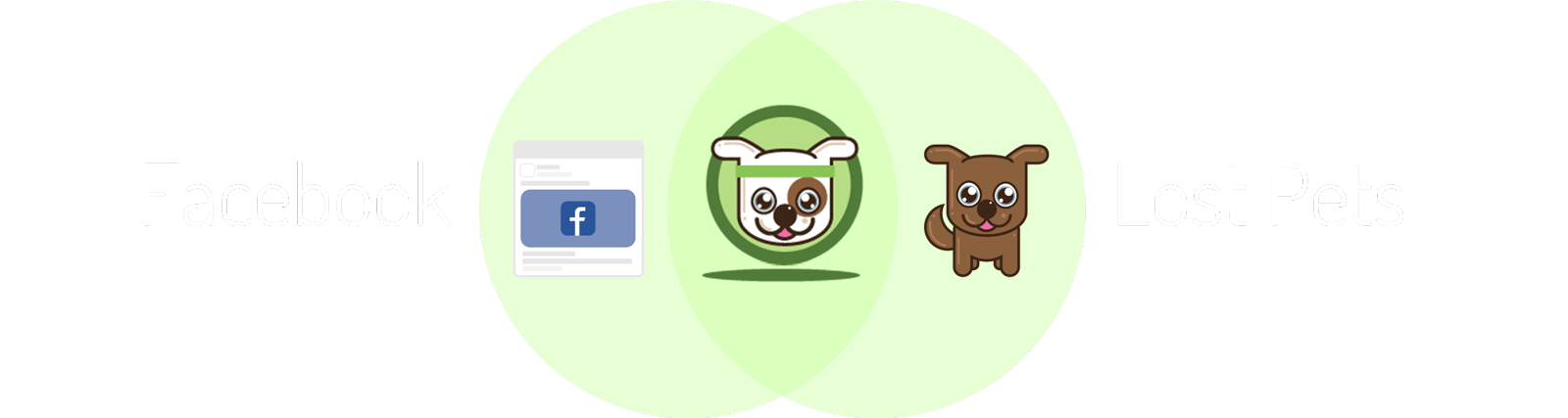 Facebook Ads + Lost Pets